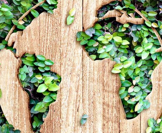 Un monde sans déchets ?