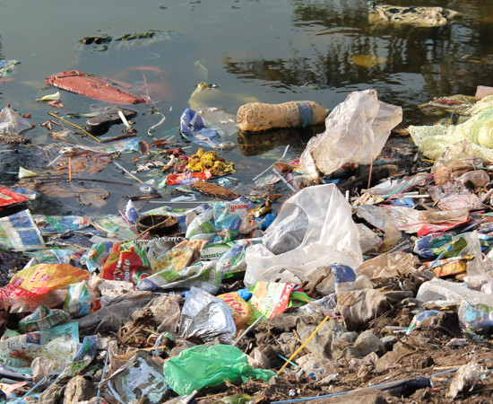 Ama : déchets et toxines